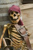 Pirate skeleton. Dressed in colorful pirates clothes with brown leather belt stock photo