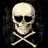 Pirate skull. Wearing sunglasses and bones, grunge background Royalty Free Stock Photo
