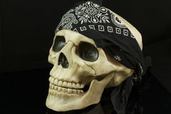 Pirate Skull. With a black and white bandana Royalty Free Stock Photos