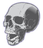 Pirate skull isolated on white background Royalty Free Stock Photography