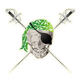 Pirate skull sticker Stock Images