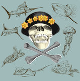 Pirate skull and underwater life - hand drawn vector Stock Images