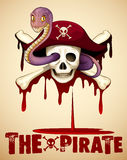 Pirate theme with skull and snake Stock Photography