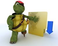 Pirate Tortoise depicting illegal downloads Royalty Free Stock Photos