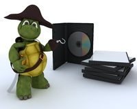 Pirate Tortoise with DVD CD and Software Royalty Free Stock Images