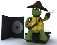 Pirate Tortoise with DVD CD and Software Stock Photo
