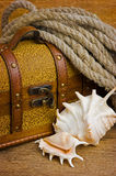 Pirate treasure chest Stock Image