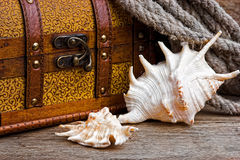 Pirate treasure chest Royalty Free Stock Photos