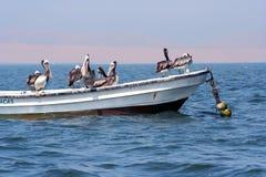 Pirates of the caribean :-) Royalty Free Stock Photos