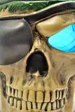 piratkopiera skallen Fotografering för Bildbyråer