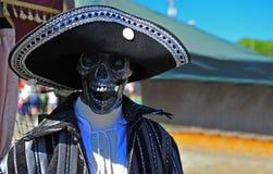 piratkopiera skelett Royaltyfri Fotografi