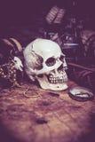 Piratkopierar och skatten Arkivfoton