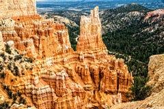 Pires majestueux chez Bryce Canyon N P Images libres de droits