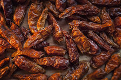 Piri piri chili peppers Royalty Free Stock Photography