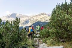 Pirin山的,保加利亚远足者 库存图片