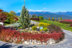 Pirin高尔夫俱乐部五颜六色的秋天树、路和蓝天 免版税库存照片