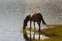 Pirin lake Stock Image