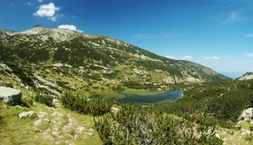 Pirin National Park,bulgarian unesco heritage stock image