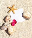 Pirit della spiaggia Fotografia Stock