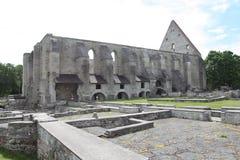 Pirita klasztor Rujnuje Tallinn Estonia Fotografia Royalty Free