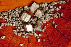 Pirita - oro del ` s del tonto - en el tocón de árbol de madera Fotos de archivo libres de regalías