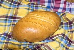 Pirog tradizionale russo del pierog della torta Fotografie Stock Libere da Diritti