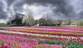 Pirogiv an einem Frühlingstag Lizenzfreie Stockbilder