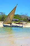 pirogue beach seaweed iindian ocean madagascar  home Stock Photo