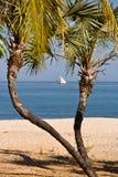 Pirogue de Sakalava photo libre de droits