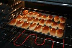 piroshki печенья выпечки Стоковое Изображение RF