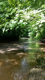 Pirtle小河 库存照片