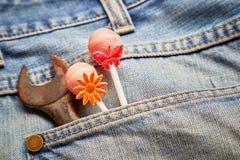 Pirulitos no bolso das calças de brim Fotos de Stock Royalty Free