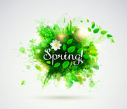 Pisać słowa wiosna Obrazy Stock