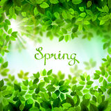 Pisać słowa wiosna Fotografia Stock