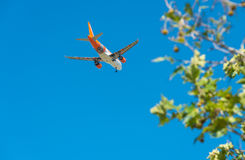 PISA - AUGUST 25, 2015: Easyjet flight in Galilei airport. Easyjet is a major low cost company in Europe.  royalty free stock images