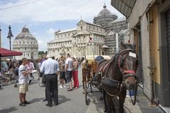 Pisa-carriages are ready to transport tourists around the city royalty free stock photography