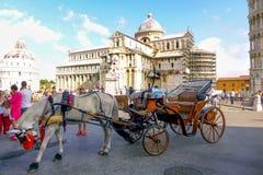 Pisa, Italia Fotografia Stock Libera da Diritti