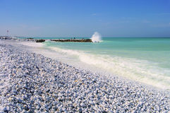 Pisa plaża obraz stock