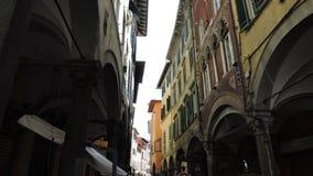 Pisa smala gator fotografering för bildbyråer