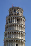 Pisa tower Stock Image