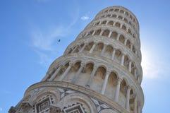 Pisa-Turm mit Fliegenvogel Stockfotos