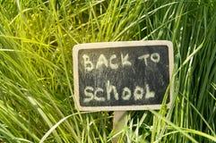 Pisa? z powrotem szko?a, pisz?ca kred? przeciw zielonej trawy t?u na blackboard, jaskrawy ?wiat?o s?oneczne zdjęcie stock