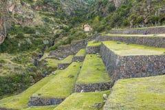 Pisac fördärvar Cuzco Peru Arkivbilder