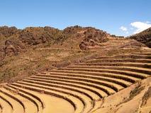 Pisac Inca Site Incan Ruins Peru terrassera Arkivfoton