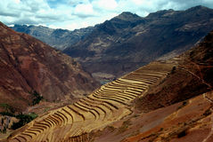 Pisac, Peru. Terracing from Inka times in Pisac, Peru Royalty Free Stock Images