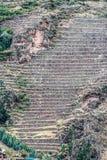 Pisac ruins peruvian Andes  Cuzco Peru Stock Photo