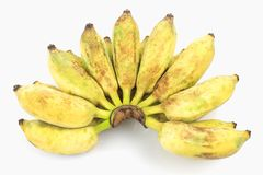Pisang Awak banana royalty free stock photos