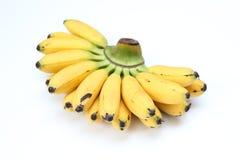 Pisang mas banan lub złoty banan Zdjęcia Royalty Free