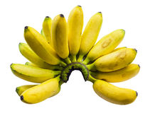 Pisang Mas banana Stock Photos