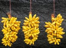 Pisang Mas-Banane Stockfoto
